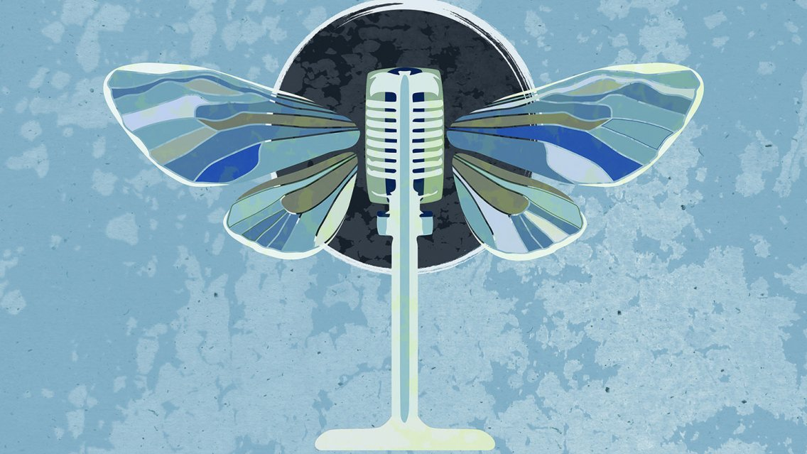 an old fashioned microphone with wings like a moth