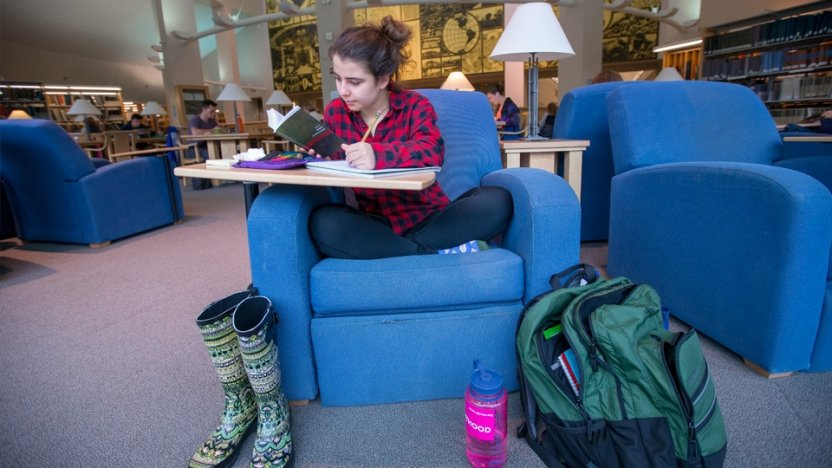 A student curls up with her studies in a comfy blue chair at Middlebury's David Library.