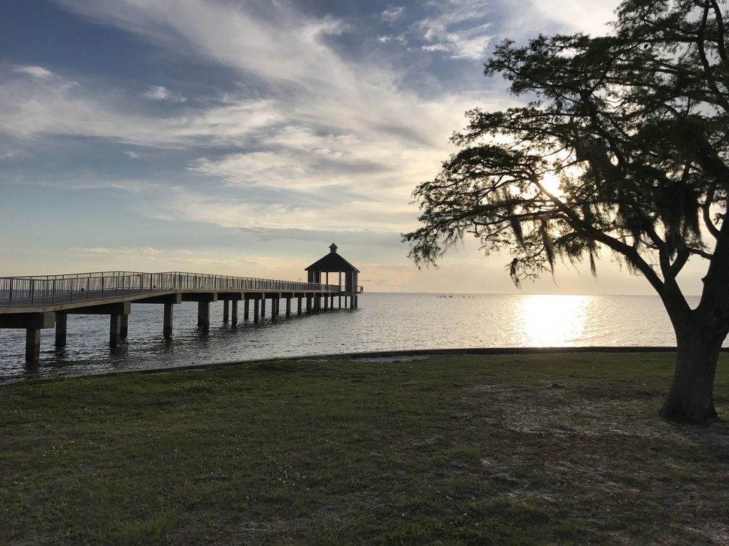 Louisiana Pier and oak tree