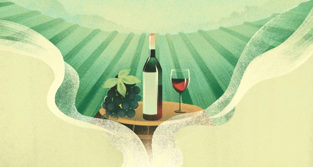 Spanish for the Wine Industry illustration