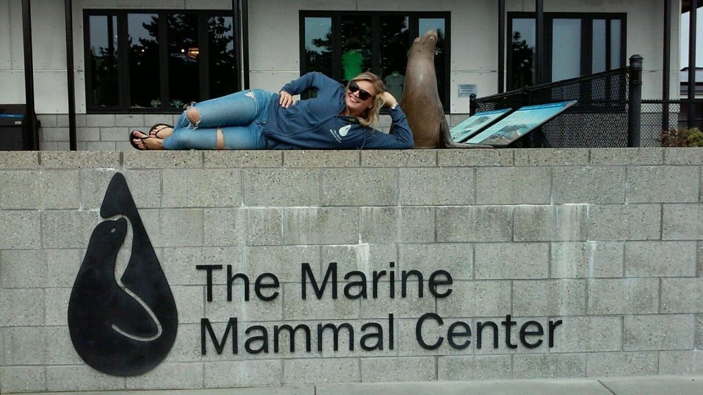 CBE Summer Fellow Mindy Domurat at Marine Mammal Center 2015