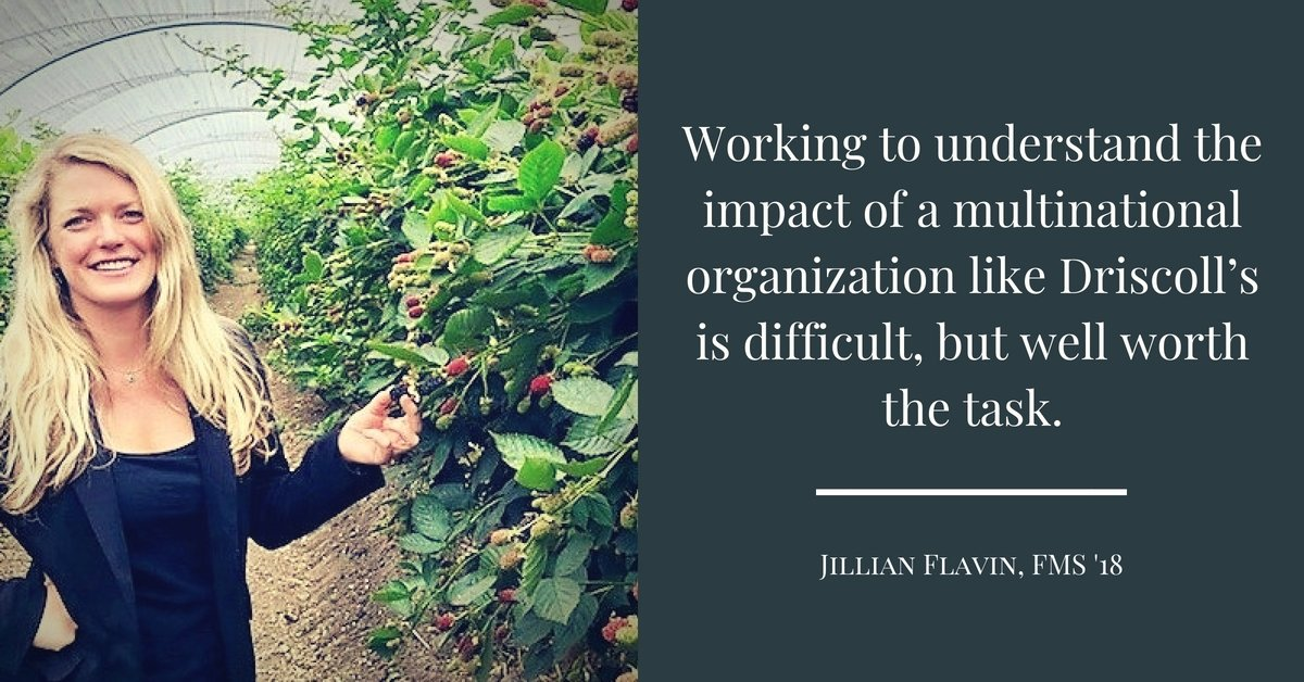 Jillian Flavin Quote