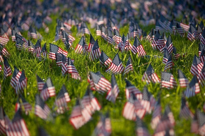 Small U.S. flags on a lawn as a memorial