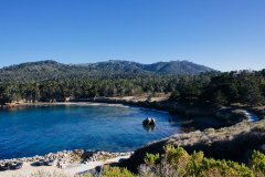 Point Lobos State Reserve including Whalers Cove