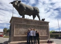 MBA Students in front of Bull Statue in Chihuahua, Mexico