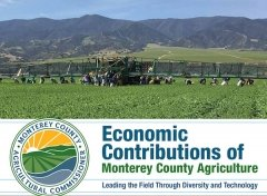 Monterey County Graphic with Farm Workers in the Field