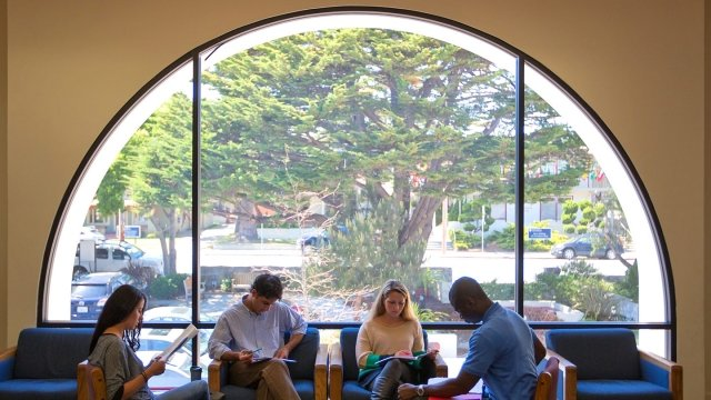Students work near the large sun-filled window of the campus library.