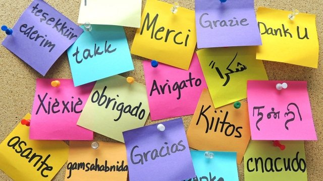 "Many brightly colored post-it notes cover a wall and say ""thank you"" in multiple languages."