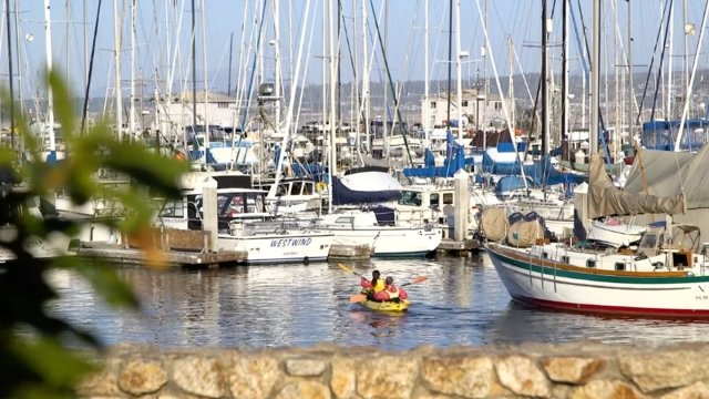 A photo of the marina filled with sailboats on a sunny day.