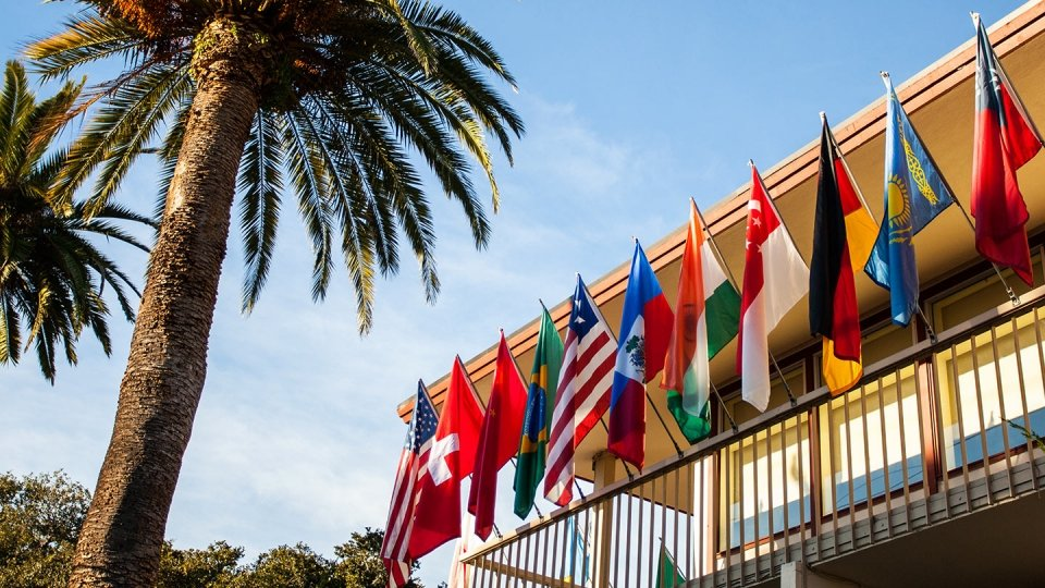 An array of international flags fly from a campus building beneath a sunny blue sky and local palm trees.