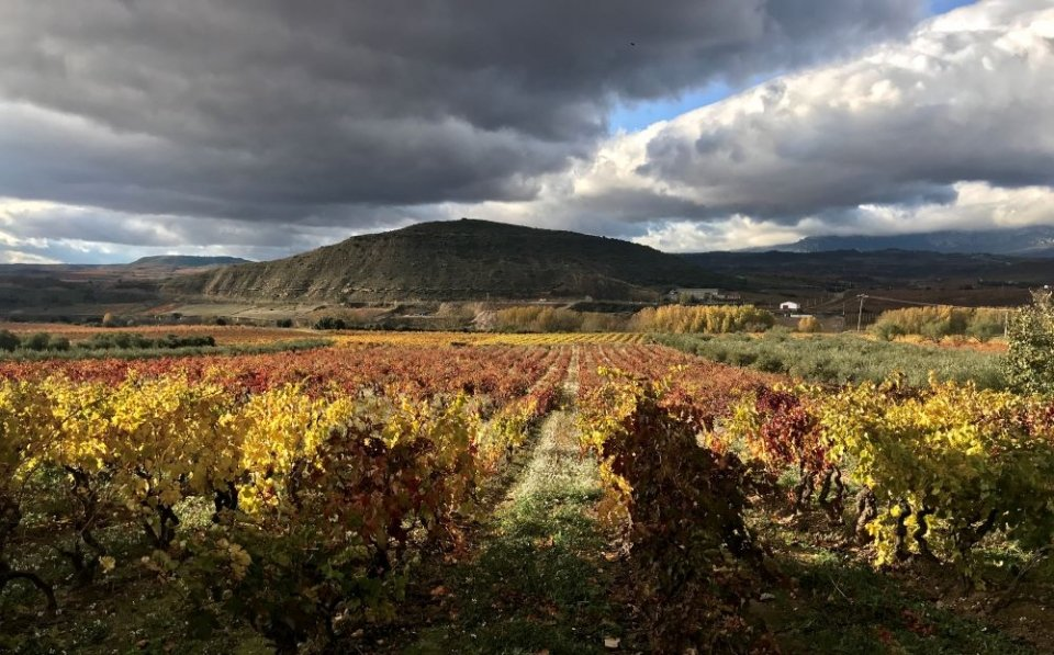 Colors of Rioja