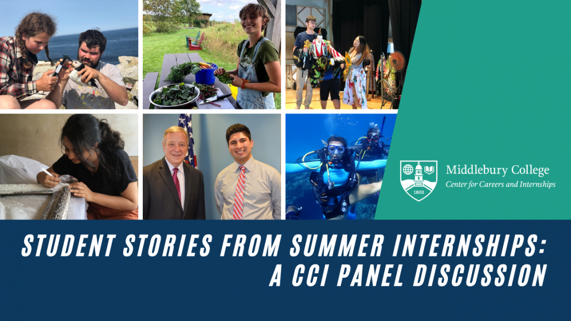 YouTube Graphic for CCI Summer Internship Panel