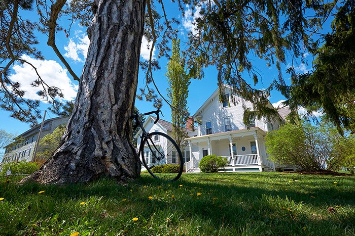 White Adirondack House with a tree and bike in front of it.
