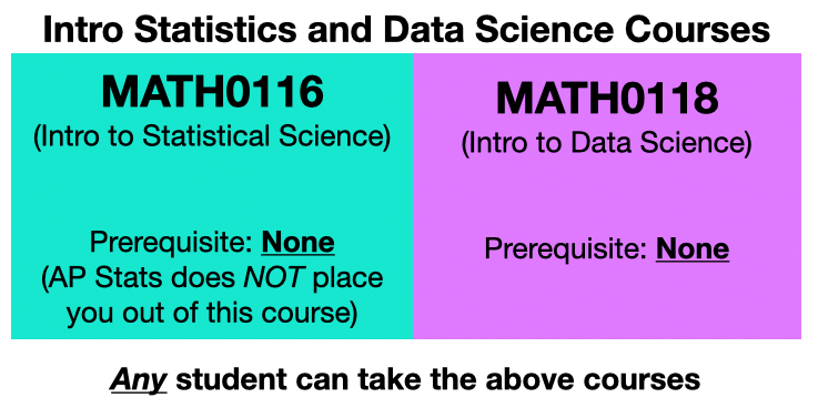 Intro Stats and Data Science Courses